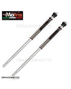Fork Kit MATRIS APRILIA RS 125 SP 2006-2013 F20A101K-R F20K